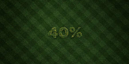 40: 40% - fresh Grass letters with flowers and dandelions - 3D rendered royalty free stock image. Can be used for online banner ads and direct mailers. Stock Photo
