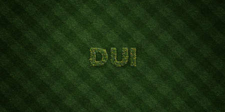 dui: DUI - fresh Grass letters with flowers and dandelions - 3D rendered royalty free stock image. Can be used for online banner ads and direct mailers.
