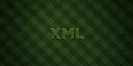 XML - fresh Grass letters with flowers and dandelions - 3D rendered royalty free stock image. Can be used for online banner ads and direct mailers. Stock Photo