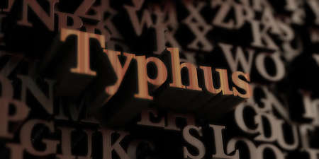 typhus: Typhus - Wooden 3D rendered lettersmessage.  Can be used for an online banner ad or a print postcard.