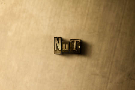 NUT - close-up of grungy vintage typeset word on metal backdrop. Royalty free stock illustration.  Can be used for online banner ads and direct mail.