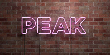 PEAK - fluorescent Neon tube Sign on brickwork - Front view - 3D rendered royalty free stock picture. Can be used for online banner ads and direct mailers. Banco de Imagens