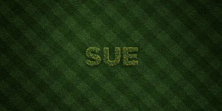 sue: SUE - fresh Grass letters with flowers and dandelions - 3D rendered royalty free stock image. Can be used for online banner ads and direct mailers.
