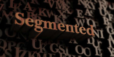 segmented bodies: Segmented - Wooden 3D rendered lettersmessage.  Can be used for an online banner ad or a print postcard.