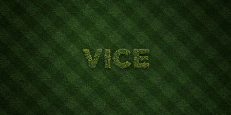 turf flowers: VICE - fresh Grass letters with flowers and dandelions - 3D rendered royalty free stock image. Can be used for online banner ads and direct mailers.