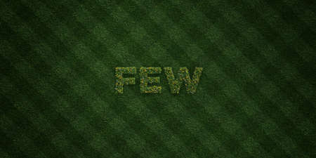 FEW - fresh Grass letters with flowers and dandelions - 3D rendered royalty free stock image. Can be used for online banner ads and direct mailers.