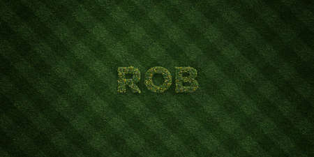 rob: ROB - fresh Grass letters with flowers and dandelions - 3D rendered royalty free stock image. Can be used for online banner ads and direct mailers. Stock Photo