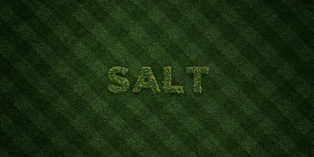 salt free: SALT - fresh Grass letters with flowers and dandelions - 3D rendered royalty free stock image. Can be used for online banner ads and direct mailers. Stock Photo