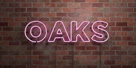 OAKS - fluorescent Neon tube Sign on brickwork - Front view - 3D rendered royalty free stock picture. Can be used for online banner ads and direct mailers.