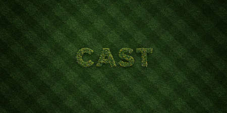 turf flowers: CAST - fresh Grass letters with flowers and dandelions - 3D rendered royalty free stock image. Can be used for online banner ads and direct mailers.
