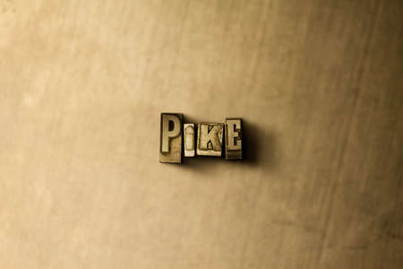PIKE - close-up of grungy vintage typeset word on metal backdrop. Royalty free stock illustration.  Can be used for online banner ads and direct mail. Zdjęcie Seryjne - 72419876