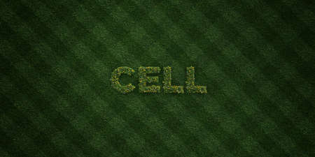 turf flowers: CELL - fresh Grass letters with flowers and dandelions - 3D rendered royalty free stock image. Can be used for online banner ads and direct mailers.
