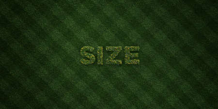 image size: SIZE - fresh Grass letters with flowers and dandelions - 3D rendered royalty free stock image. Can be used for online banner ads and direct mailers. Stock Photo