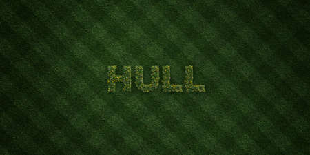 hull: HULL - fresh Grass letters with flowers and dandelions - 3D rendered royalty free stock image. Can be used for online banner ads and direct mailers. Stock Photo