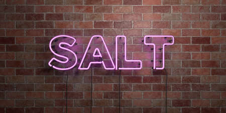 salt free: SALT - fluorescent Neon tube Sign on brickwork - Front view - 3D rendered royalty free stock picture. Can be used for online banner ads and direct mailers.