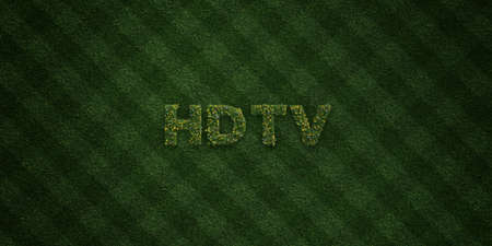 hdtv: HDTV - fresh Grass letters with flowers and dandelions - 3D rendered royalty free stock image. Can be used for online banner ads and direct mailers.