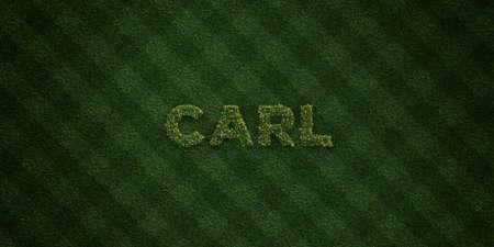 カール - 花とタンポポの新鮮な草の手紙 - 3 D レンダリングされたロイヤリティ フリー ストック イメージ。オンライン バナー広告やダイレクト メ