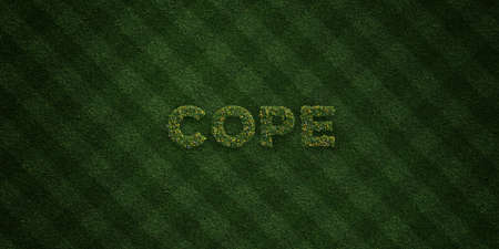 COPE - fresh Grass letters with flowers and dandelions - 3D rendered royalty free stock image. Can be used for online banner ads and direct mailers. Stock Photo