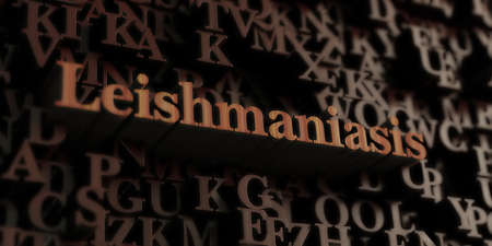 Leishmaniasis - Wooden 3D rendered lettersmessage.  Can be used for an online banner ad or a print postcard.