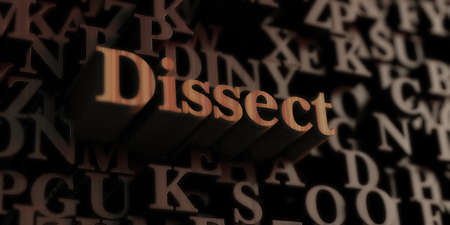 dissect: Dissect - Wooden 3D rendered lettersmessage.  Can be used for an online banner ad or a print postcard.