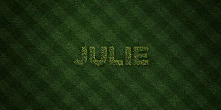 julie: JULIE - fresh Grass letters with flowers and dandelions - 3D rendered royalty free stock image. Can be used for online banner ads and direct mailers. Stock Photo