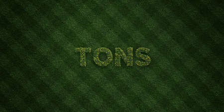 tons: TONS - fresh Grass letters with flowers and dandelions - 3D rendered royalty free stock image. Can be used for online banner ads and direct mailers. Stock Photo