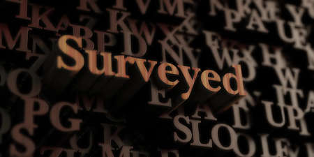 Surveyed - Wooden 3D rendered lettersmessage.  Can be used for an online banner ad or a print postcard.