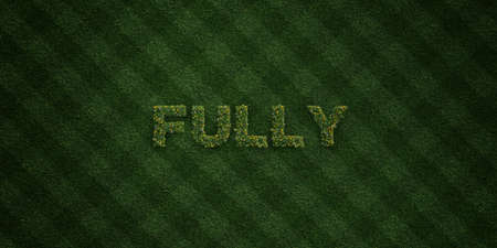 FULLY - fresh Grass letters with flowers and dandelions - 3D rendered royalty free stock image. Can be used for online banner ads and direct mailers. Stock Photo