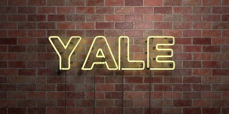 yale: YALE - fluorescent Neon tube Sign on brickwork - Front view - 3D rendered royalty free stock picture. Can be used for online banner ads and direct mailers.