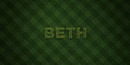 BETH - fresh Grass letters with flowers and dandelions - 3D rendered royalty free stock image. Can be used for online banner ads and direct mailers.