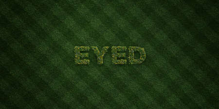 eyed: EYED - fresh Grass letters with flowers and dandelions - 3D rendered royalty free stock image. Can be used for online banner ads and direct mailers. Stock Photo