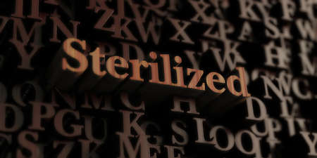 sterilized: sterilized - Wooden 3D rendered lettersmessage.  Can be used for an online banner ad or a print postcard.