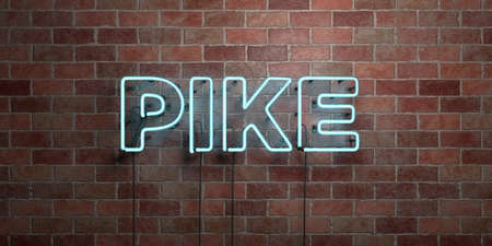 PIKE - fluorescent Neon tube Sign on brickwork - Front view - 3D rendered royalty free stock picture. Can be used for online banner ads and direct mailers.
