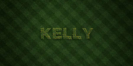 KELLY - fresh Grass letters with flowers and dandelions - 3D rendered royalty free stock image. Can be used for online banner ads and direct mailers. Stock Photo