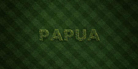 PAPUA - fresh Grass letters with flowers and dandelions - 3D rendered royalty free stock image. Can be used for online banner ads and direct mailers.