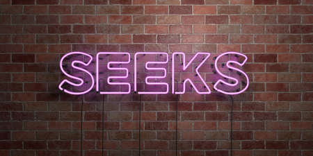 SEEKS - fluorescent Neon tube Sign on brickwork - Front view - 3D rendered royalty free stock picture. Can be used for online banner ads and direct mailers. Stock Photo