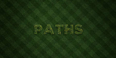 garden path: PATHS - fresh Grass letters with flowers and dandelions - 3D rendered royalty free stock image. Can be used for online banner ads and direct mailers.