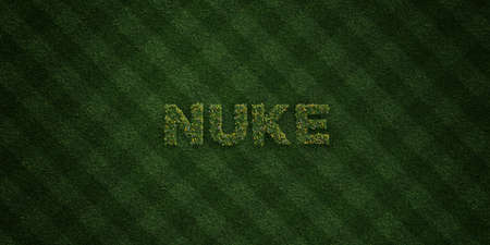 NUKE - fresh Grass letters with flowers and dandelions - 3D rendered royalty free stock image. Can be used for online banner ads and direct mailers.