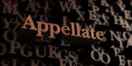 Appellate - Wooden 3D rendered lettersmessage.  Can be used for an online banner ad or a print postcard.