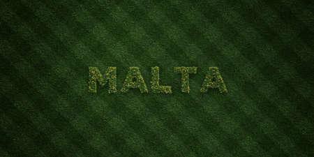 몰타 - 신선한 잔디 편지 꽃과 민들레 -3D 렌더링 로열티 무료 재고 이미지. 온라인 배너 광고 및 다이렉트 메일러에 사용할 수 있습니다.