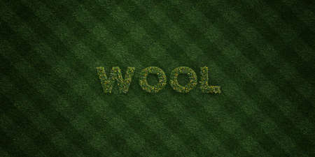 WOOL - fresh Grass letters with flowers and dandelions - 3D rendered royalty free stock image. Can be used for online banner ads and direct mailers. Stock Photo