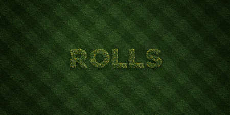 ROLLS - fresh Grass letters with flowers and dandelions - 3D rendered royalty free stock image. Can be used for online banner ads and direct mailers. Stock fotó