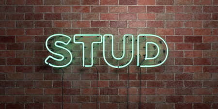 STUD - fluorescent Neon tube Sign on brickwork - Front view - 3D rendered royalty free stock picture. Can be used for online banner ads and direct mailers. Reklamní fotografie - 72759426