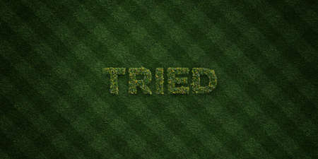 tried: TRIED - fresh Grass letters with flowers and dandelions - 3D rendered royalty free stock image. Can be used for online banner ads and direct mailers.
