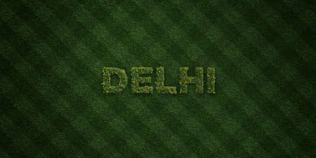 델리 - 신선한 잔디 편지 꽃과 민들레 -3D 렌더링 로열티 무료 재고 이미지. 온라인 배너 광고 및 다이렉트 메일러에 사용할 수 있습니다. 스톡 콘텐츠