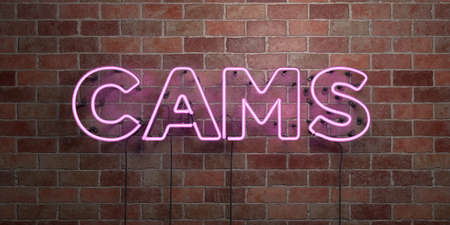 cams: CAMS - fluorescent Neon tube Sign on brickwork - Front view - 3D rendered royalty free stock picture. Can be used for online banner ads and direct mailers.