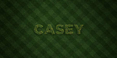 casey: CASEY - fresh Grass letters with flowers and dandelions - 3D rendered royalty free stock image. Can be used for online banner ads and direct mailers.