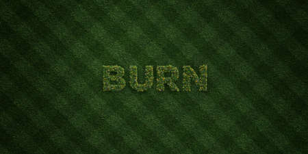 BURN - fresh Grass letters with flowers and dandelions - 3D rendered royalty free stock image. Can be used for online banner ads and direct mailers.