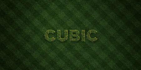 立方 - 花とタンポポの新鮮な草の手紙 - 3 D レンダリングされたロイヤリティ フリー ストック イメージ。オンライン バナー広告やダイレクト メー 写真素材