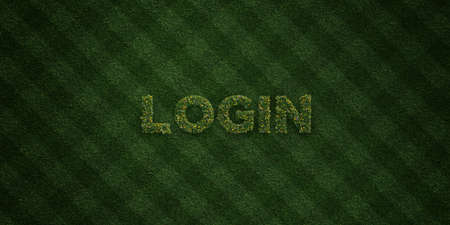 LOGIN - fresh Grass letters with flowers and dandelions - 3D rendered royalty free stock image. Can be used for online banner ads and direct mailers. Stock Photo
